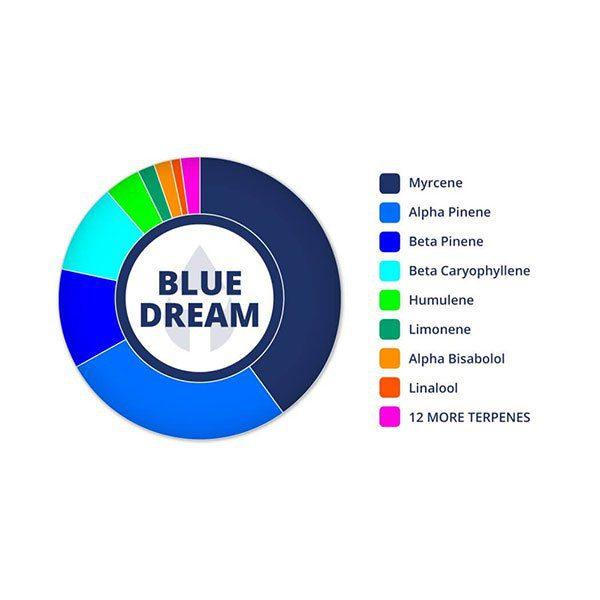 Blue Dream 30ml Tincture 1