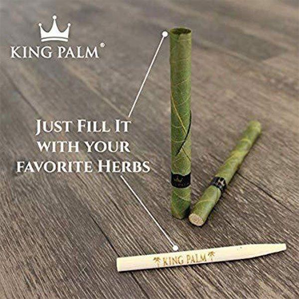 King Palm Mini 1